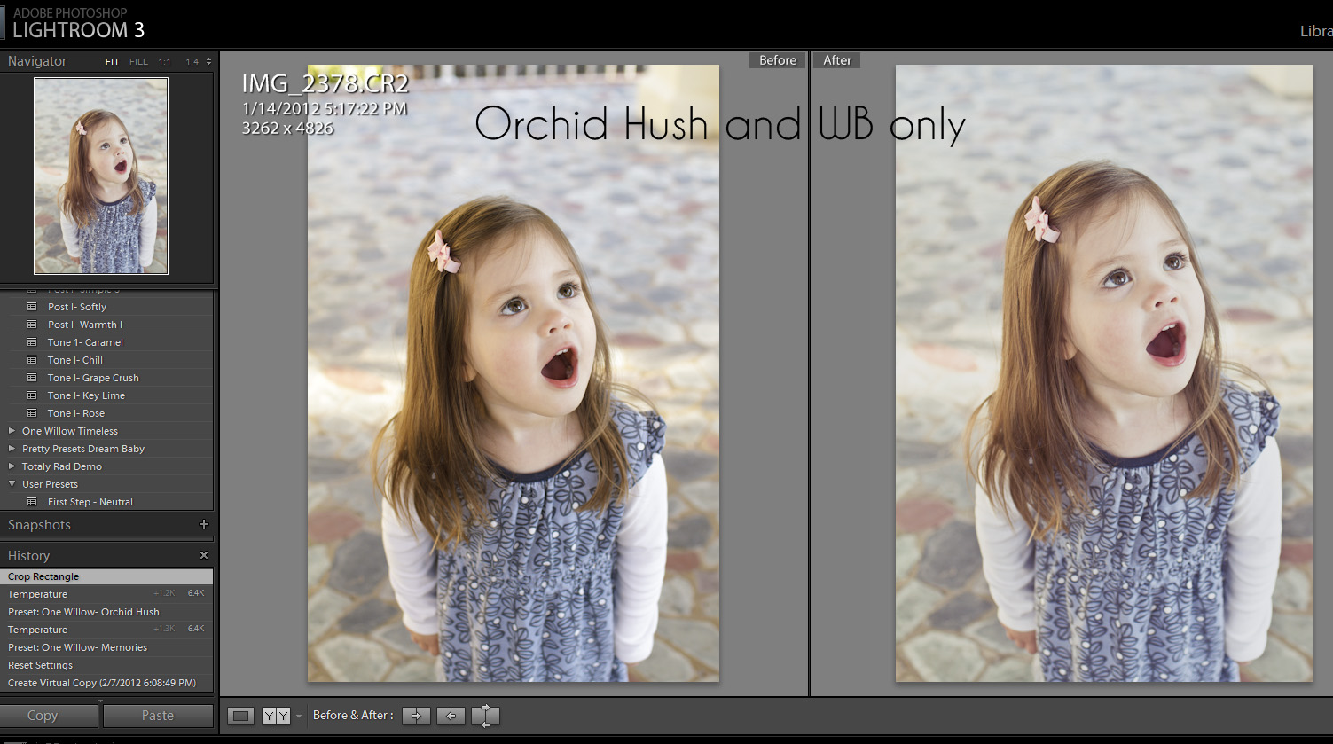 OrchidHushFinal