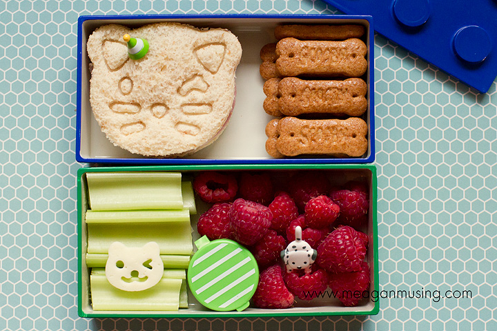 Simple Bentos // Cats & Dogs // Meagan Musing